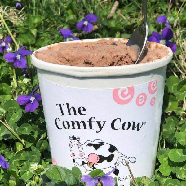 Comfy Cow, The